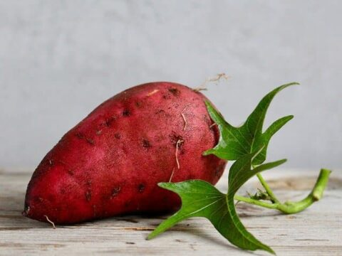 Yam Dream Meaning